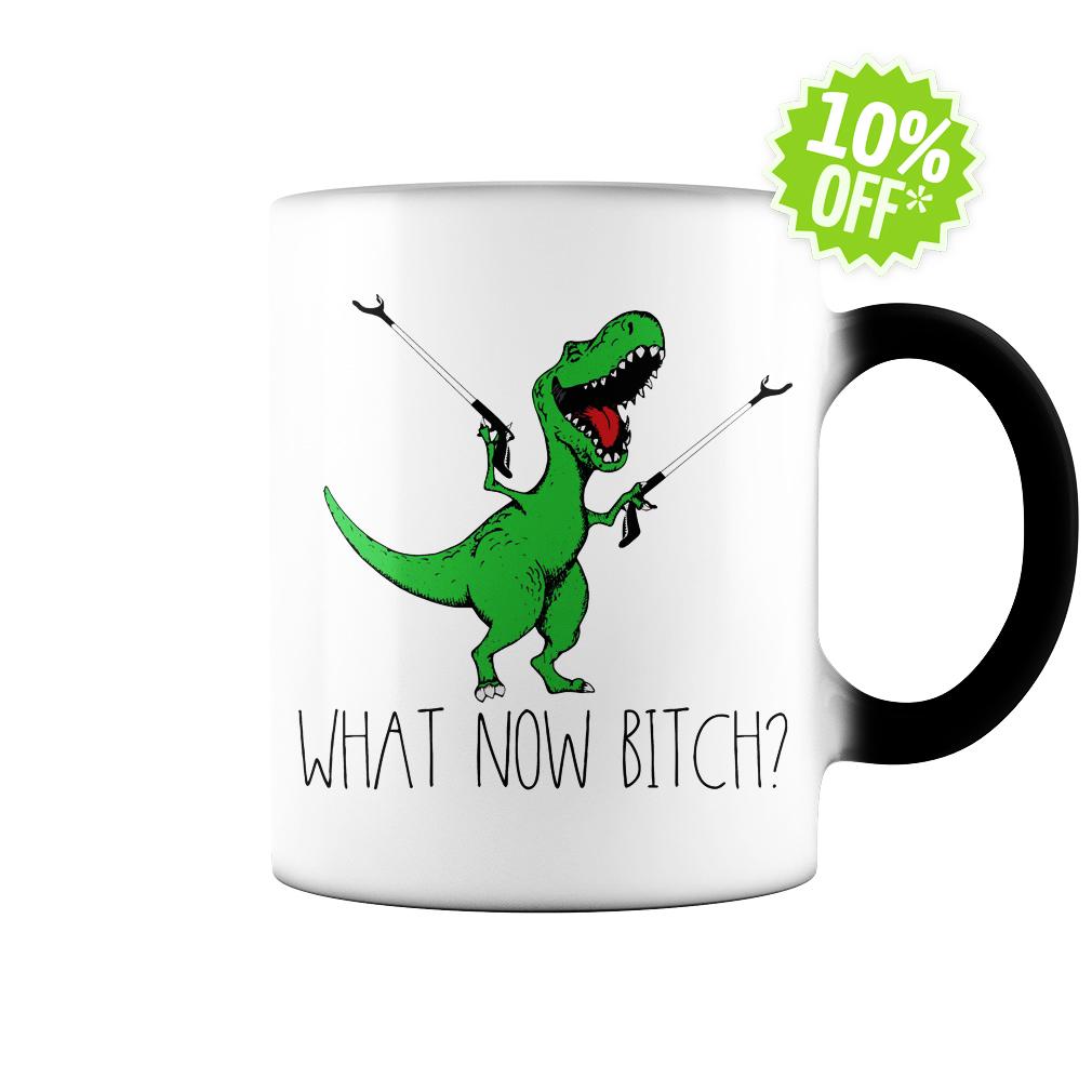 Dinosaurs T-Rex What now bitch color change mug