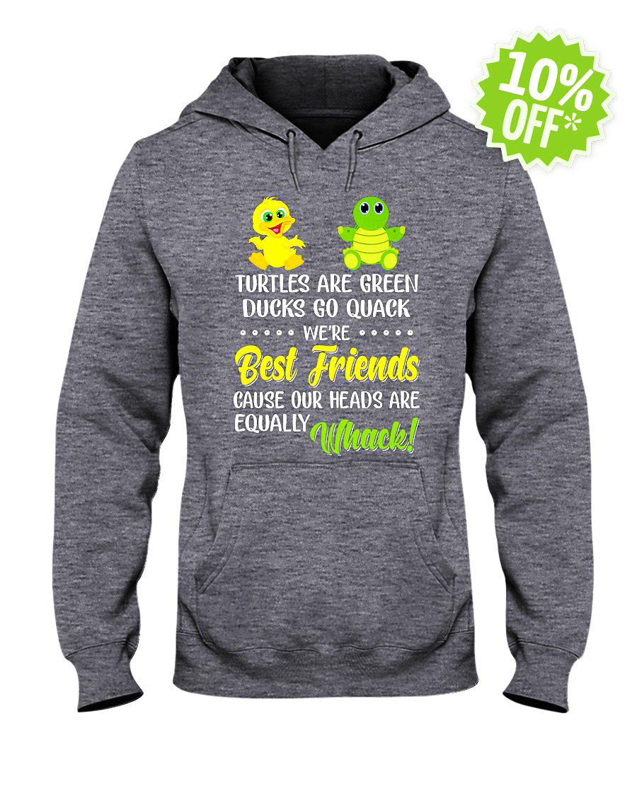 Turtles Are Green Ducks Go Quack We're Best Friends Cause Our Heads Are Equally Whack hooded sweatshirt