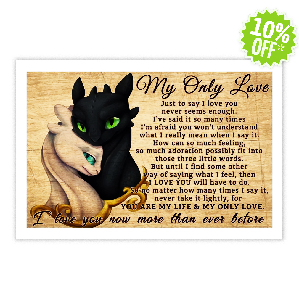 How To Train Your Dragon my only love I love you now more than ever before 17x11 Poster