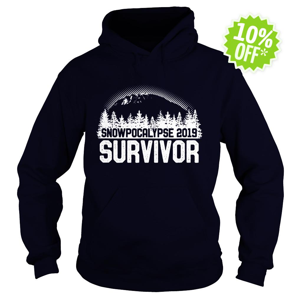 Snowpocalypse 2019 survivor hoodie