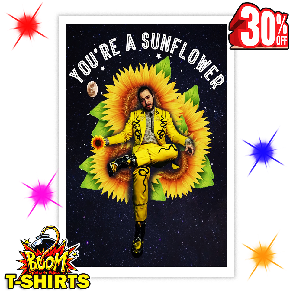 Post Malone You're A Sunflower 11x17 Poster