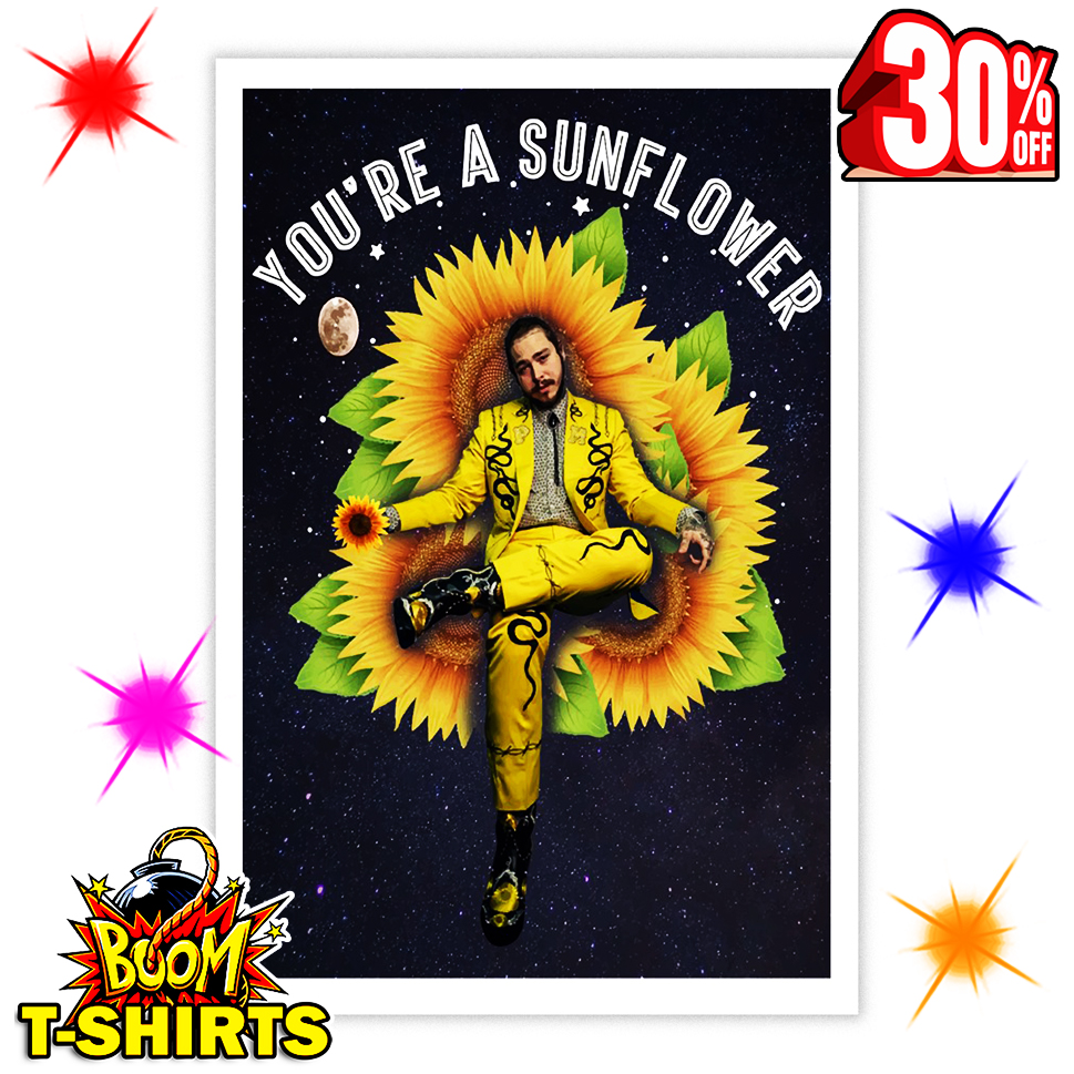 Post Malone You're A Sunflower 16x24 Poster
