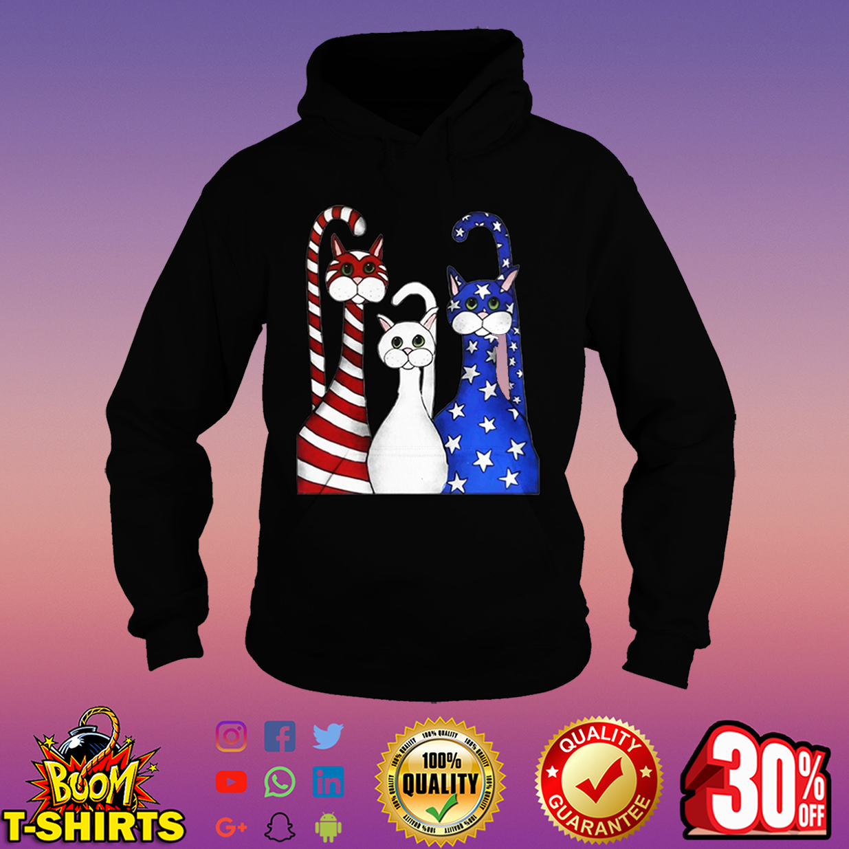 Cats 4th of July hoodie