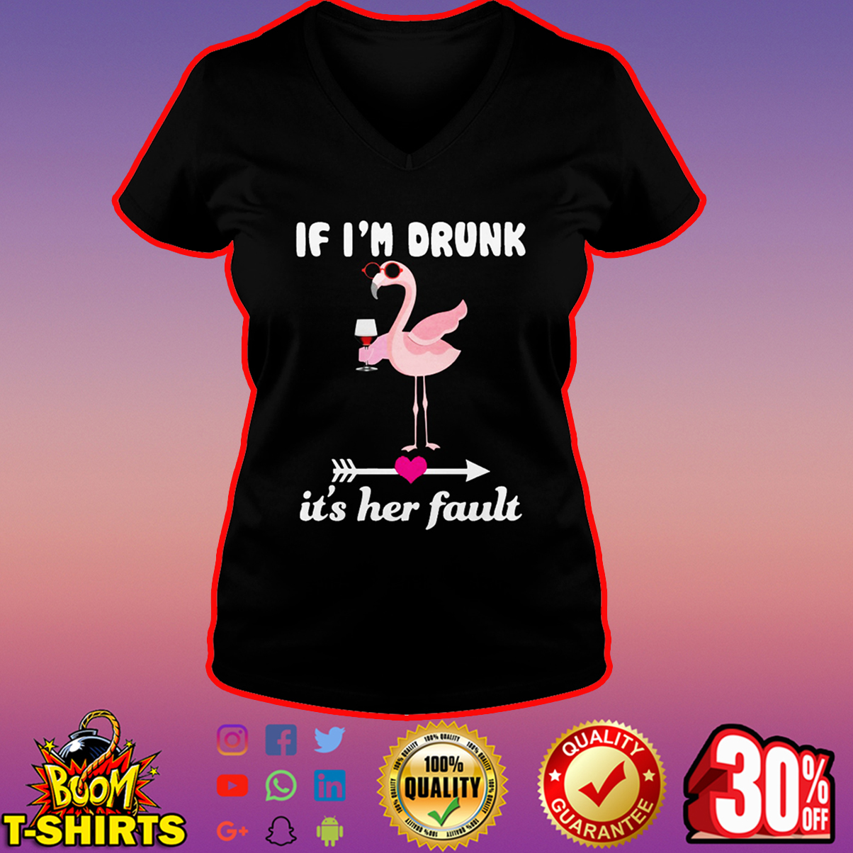 Flamingo If I'm drunk it's her fault v-neck