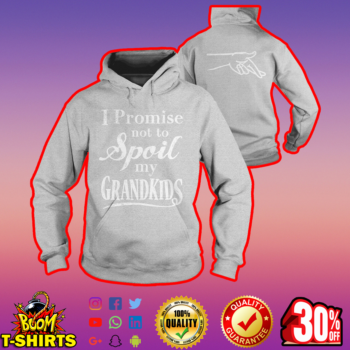 I promise not to spoil my grandkids hoodie