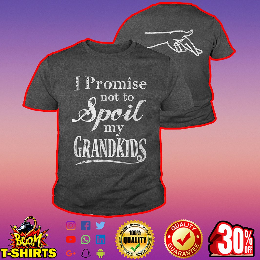I promise not to spoil my grandkids youth tee