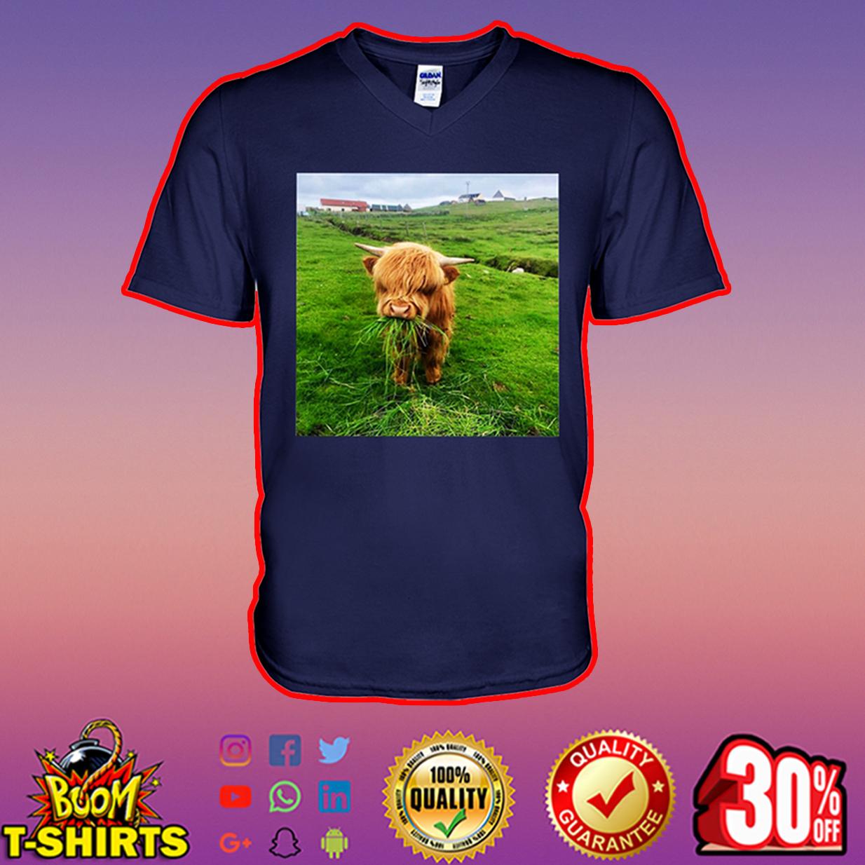 Scottish Highland Cow Eating Grass v-neck