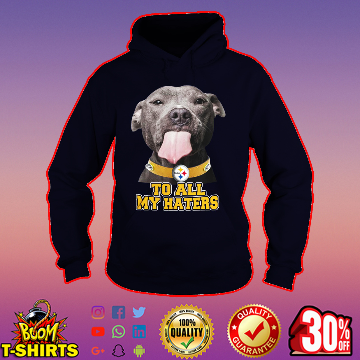 Pitbull Steelers too all my haters hoodie