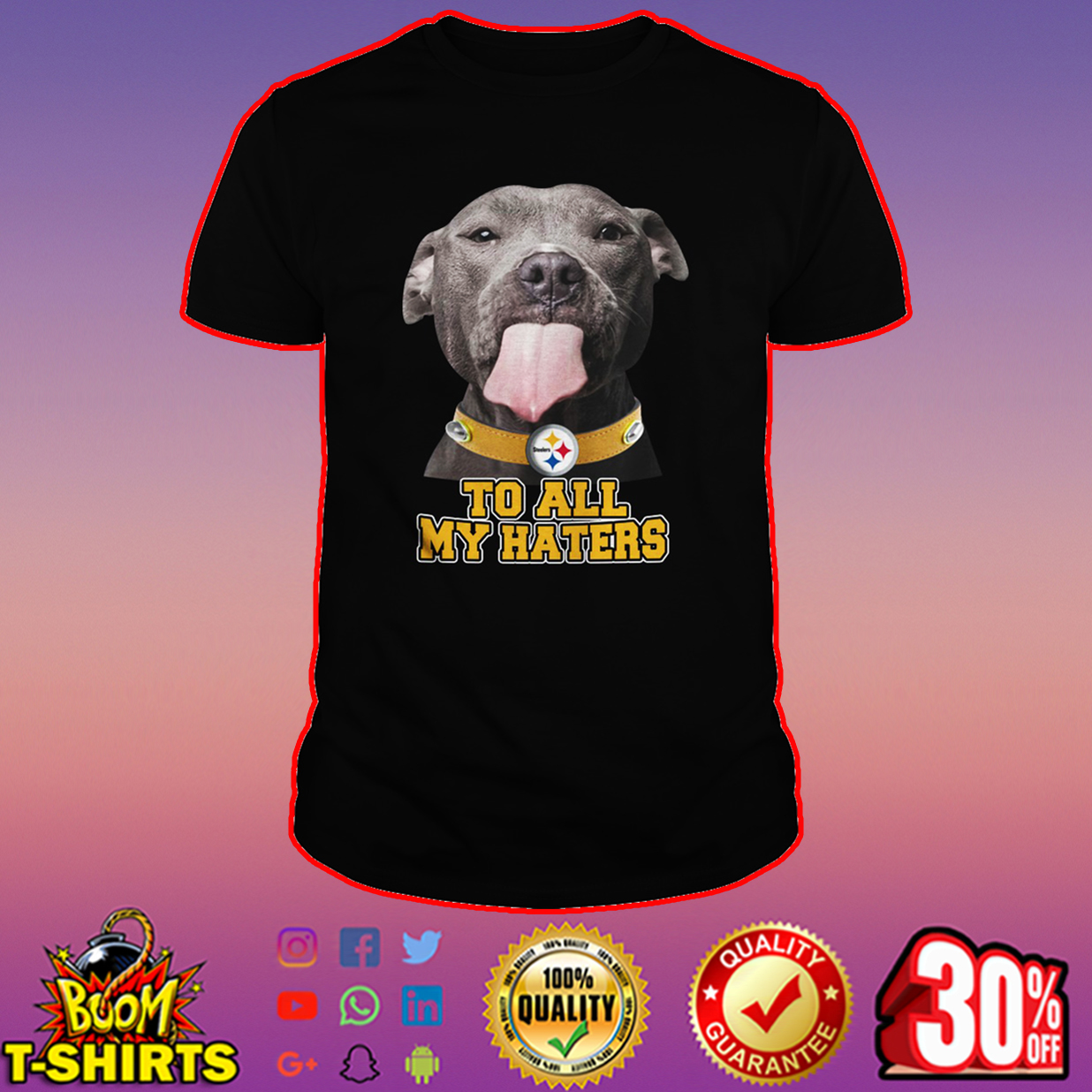 Pitbull Steelers too all my haters shirt