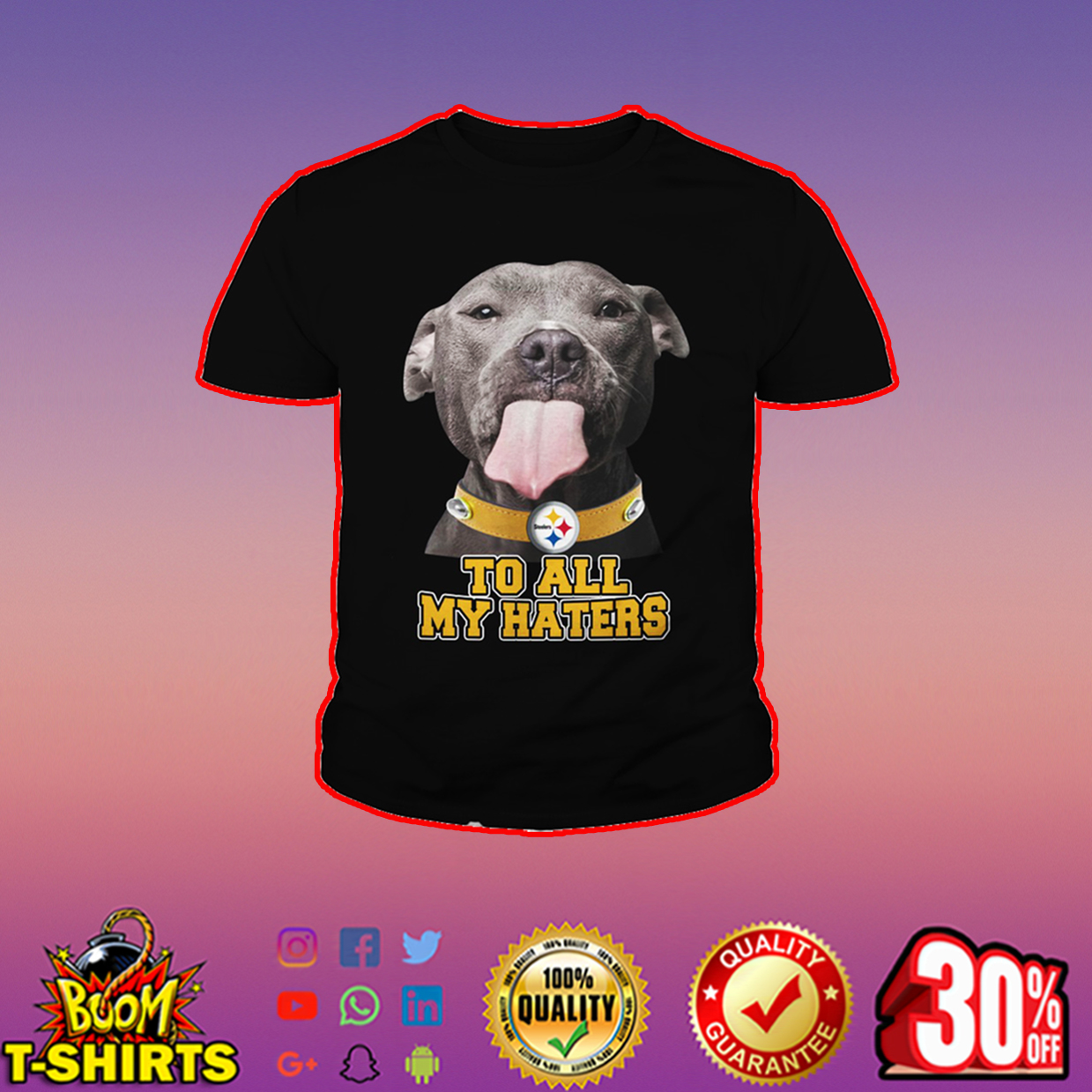 Pitbull Steelers too all my haters youth tee