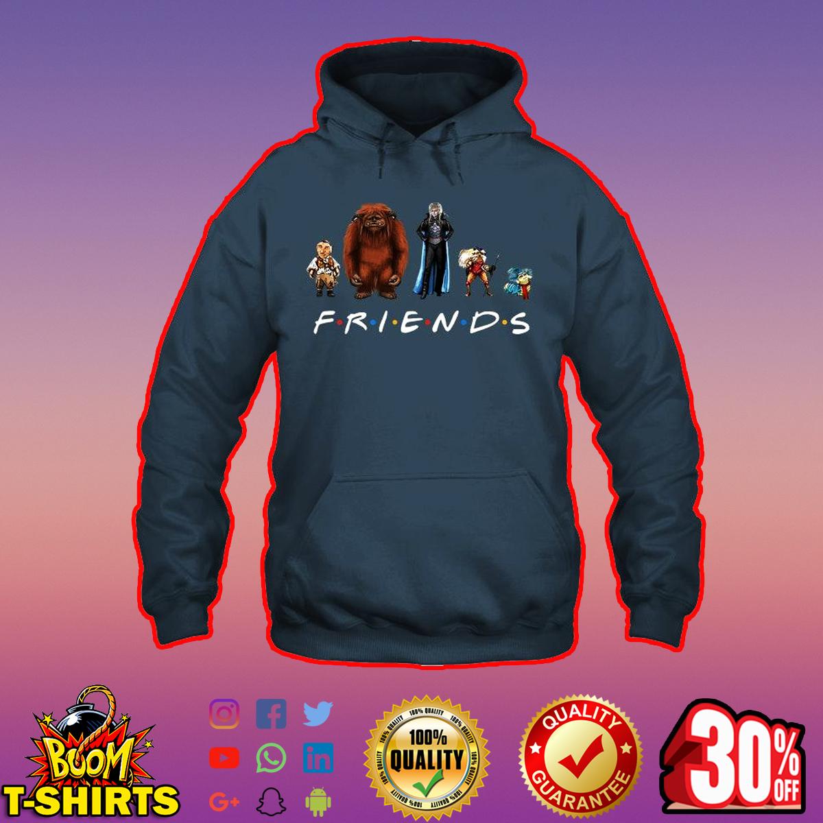 Labyrinth friends hoodie